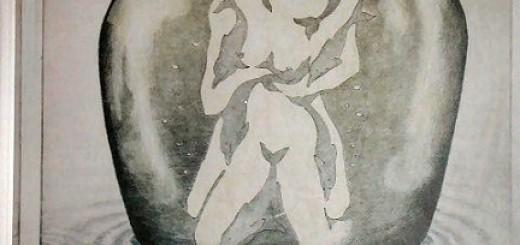 illusione-ottica-delfini