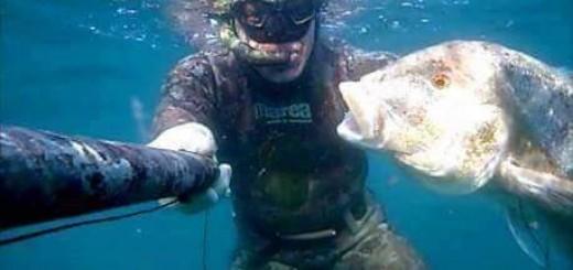 Maschera con lenti graduate per subacquea